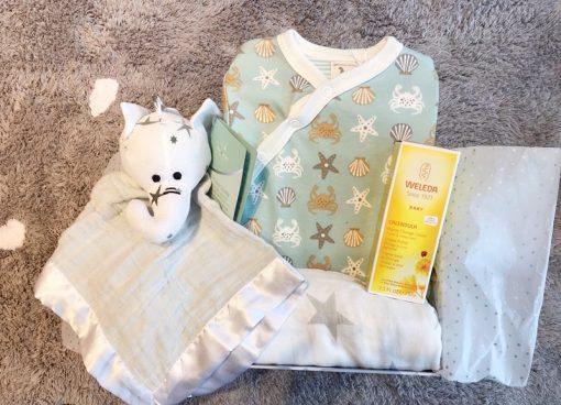 Canastilla doudou para bebe